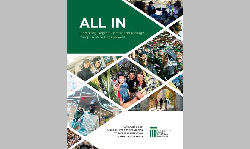 All In Report Cover